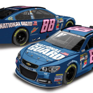 2013 Dale Earnhardt Jr 88 National Guard Pink 1/64 Diecast